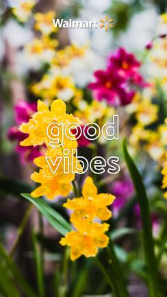 22_good_vibes